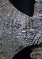 Publikasi KapaK Meteorit_Page_188