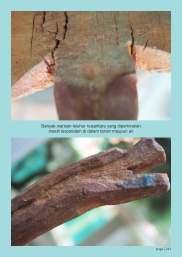 Publikasi KapaK Meteorit_Page_243