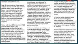 GERAKAN KEBANGKITAN SUNDALAND NUSANTARA TERBARU_Page_16